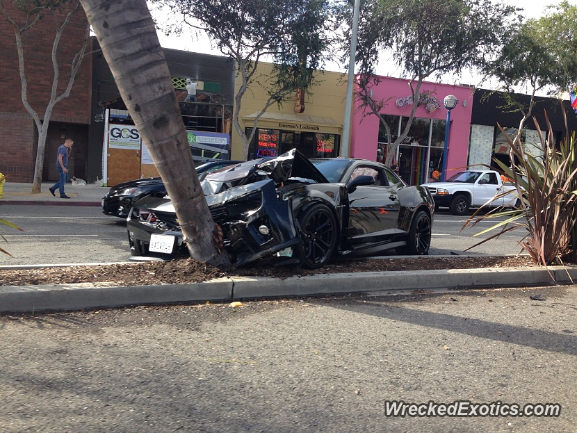 Chevrolet Camaro Zl1 Crashes Into Palm Tree In Hollywood
